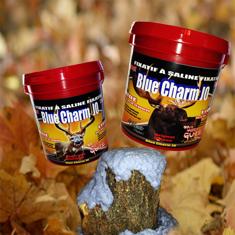 slider Blue charm fr800x800